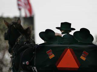 Crash involving Amish buggy kills man, horse
