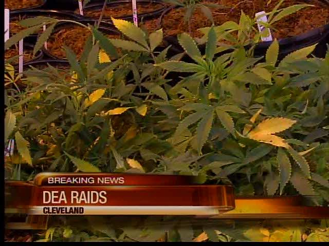 DEA: Major drug busts at six Northeast Ohio locations; more than 1,000