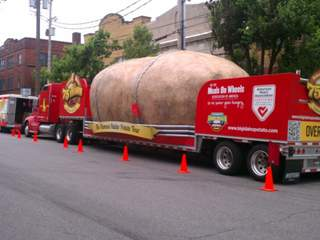 Giant potato