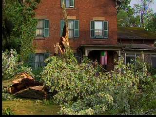 Norwalk storm damage