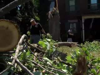 Norwalk storm clean-up