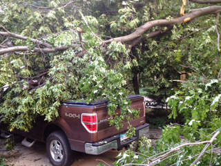 Madison tree on truck, Matt Platt_20120625155740_JPG
