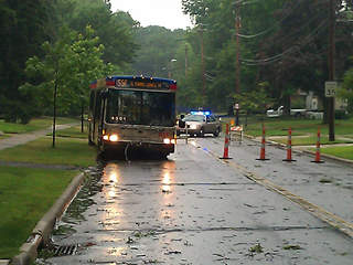 rta-bus-power-lines_20120705092531_JPG