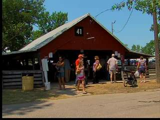 Swine flu at Ohio county fair