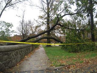 Lakewood Sandy storm damage_20121030145602_JPG