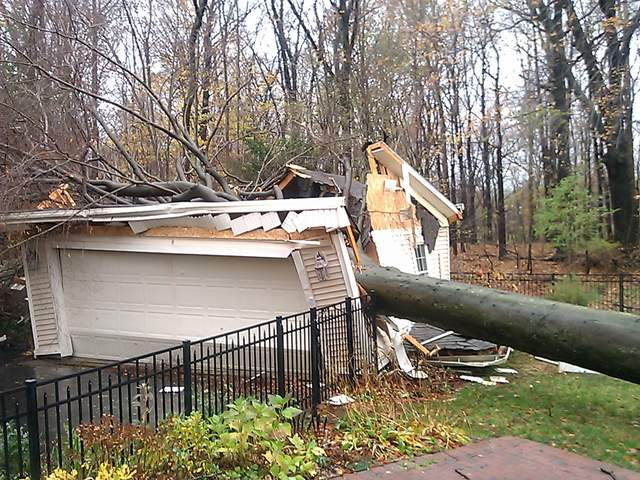 tree_on_garage_rocky_river_20121030135930_JPG