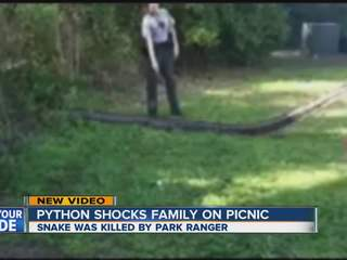 4:30am: Python found in picnic area