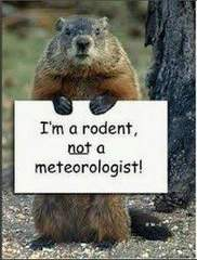 groundhog_lightbox_20130202104909_JPG