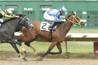 Pay The Man favored in Distaff