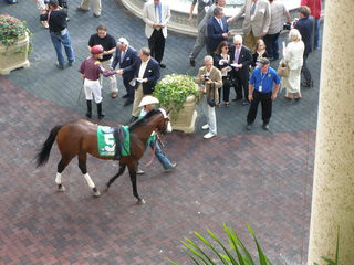 Trainer Todd Pletcher looks for a win in Swale
