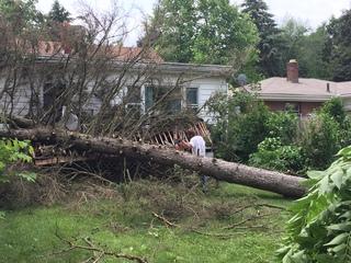 Tornado damage vs. straight-line wind damage