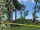 PHOTOS: Avon Lake storm damage