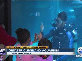 My Ohio | Leon Bibb explores Cleveland aquarium