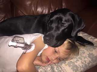 Service dog's nose saves boy with diabetes