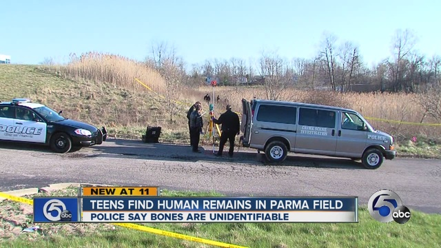"""Human remains found in woods behind Parma Toys """"R"""" Us"""