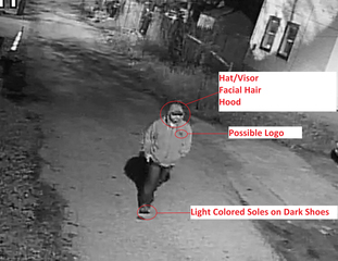 Video released of 6-year-old's possible abductor