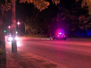 Manhunt for person who pointed gun at officer