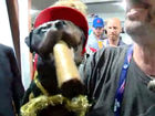 Triumph the Insult Comic Dog doesn't like Mozgov