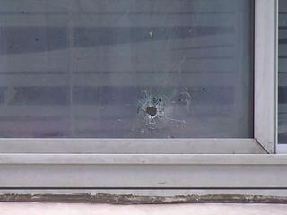 Children shot in alleged revenge shootings