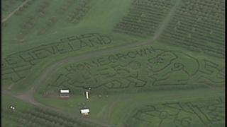 LeBron responds to corn maze dedicated to Cavs