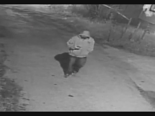 Public's help needed to track down kidnapper