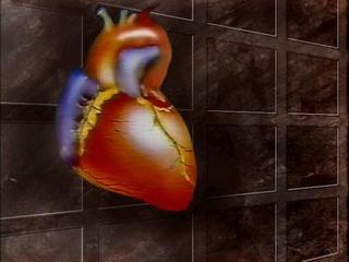 Heart found in bag in Huron Co. likely human