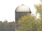 Man dies after falling in silo chute