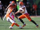 Browns fall to Cincinnati Bengals, 31-17