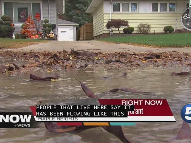 Water worries are plaguing a Maple Heights neighborhood- Tara Molina