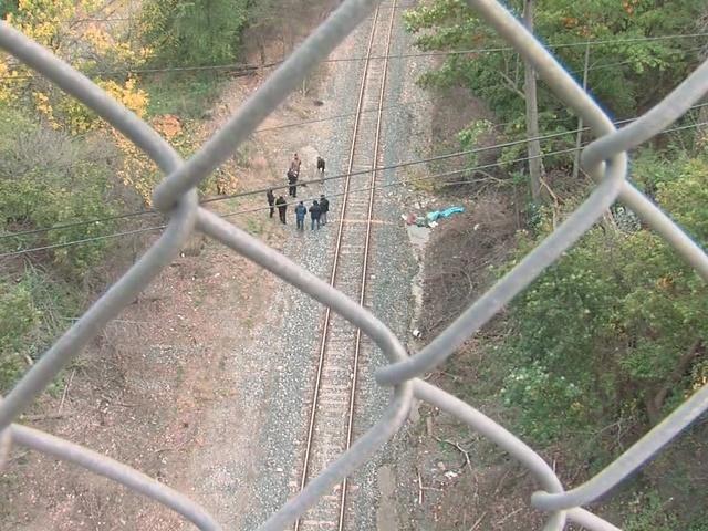 Body found near zoo update