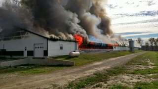 22,000 chickens dead in Ashland Co. barn fire