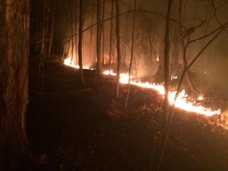Brush fire burns for hours at Whipp's Ledges