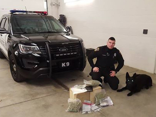 Police confiscate drugs worth over $35,000