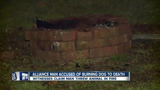 Man charged for throwing dog into fire pit