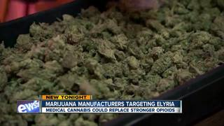 Could medical marijuana curb opioid epidemic?