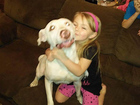 UPDATE: Akron family reunited with missing dog