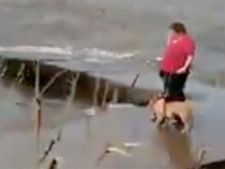 Video shows woman throwing dog into lake