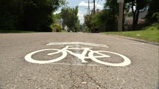 They look like bike lanes, but they're not