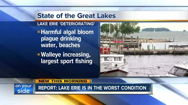 New Government Report Says Lake Erie's Health is Deterioriating