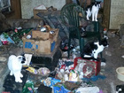50 animals removed from hoarder's condemned home