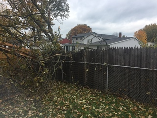 Tree falls during storm, nearly hits home