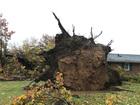 THE LATEST: Storm damage in NE Ohio
