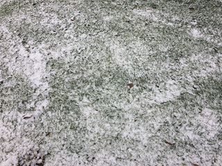 PHOTOS: First snowfall of 2017 in Northeast Ohio