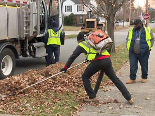 Some residents left out in leaf pick-up program