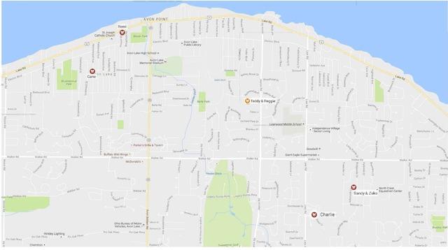 Avon Lake Dog Map