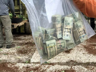 Huge marijuana bust leads to federal charges