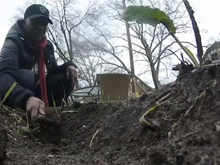CLE family turns vacant lots into gardens