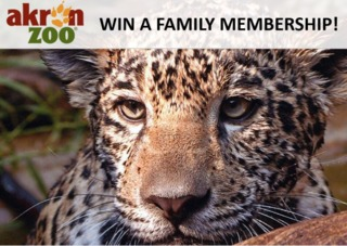 Akron Zoo Family Membership Giveaway