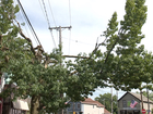 CLE residents voice tree trimming complaints