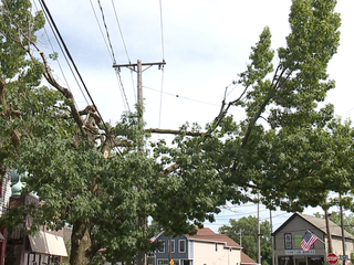 Tremont residents voice tree trimming complaints